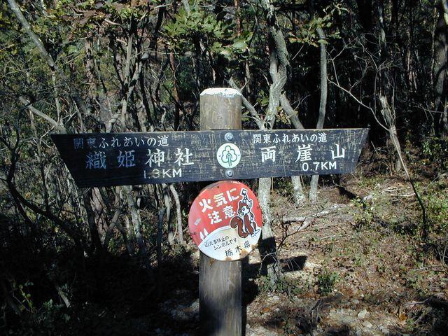 崖山 火事 両